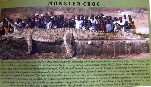 Largest Biggest CROCODILE Ever Recorded